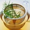 茶水图片 花盆图片 创意模板 摄影图片下载