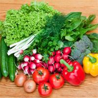减肥食材 图片下载 高清蔬果造型摄影 蔬菜摄影 创意模板 摄影图片下载