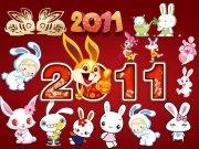 2011兔子