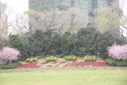 中山公園 漂亮風景