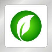 绿色标志 绿叶标志
