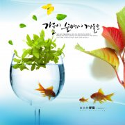 金鱼植物特写背景设计