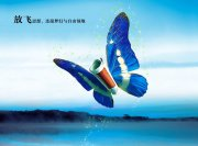 蝴蝶海报设计