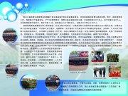 黑龙江交通管理局展板