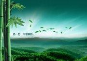 绿色风景海报