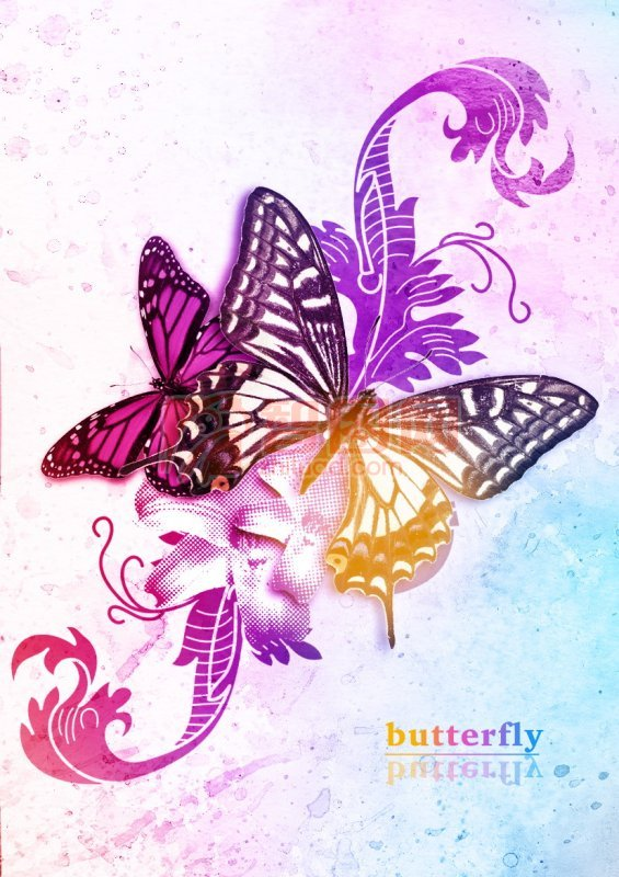 蝴蝶飞舞海报