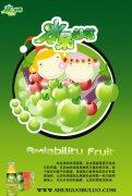 水果部落宣传海报