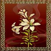 花紋邊框設計