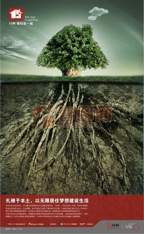 樹與根海報