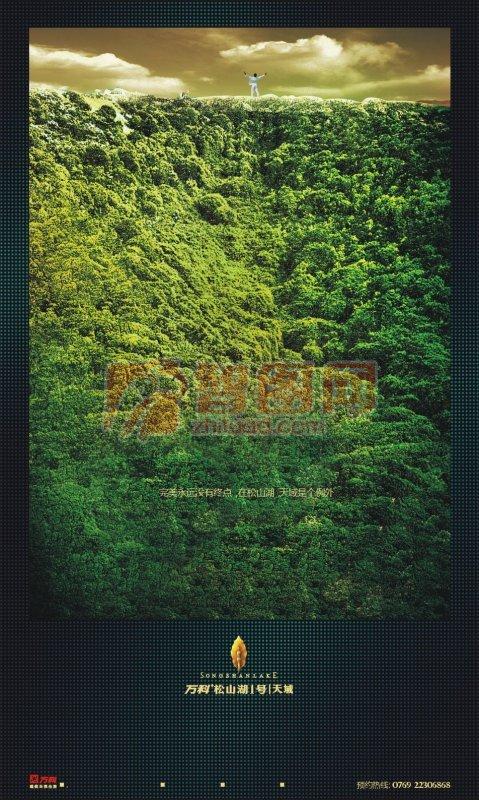 森林里的自由海报