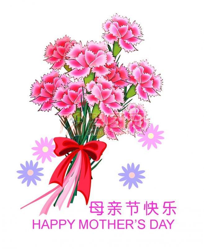 母亲节 鲜花康乃馨