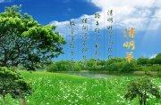 清明节设计专题 中国传统节日