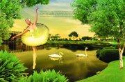 自然风光房地产海报设计