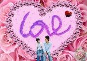 粉红色玫瑰花 爱心情人节海报