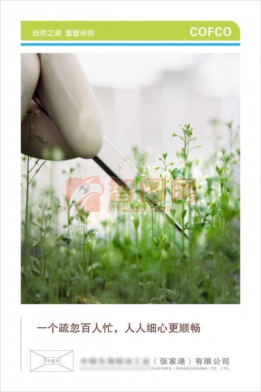 张家港有限公司海报设计