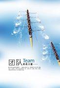 团队企业文化设计