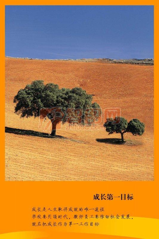 黄色沙漠背景