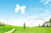 白色蝴蝶元素海報