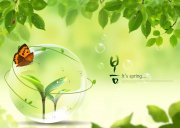 绿色背景主题