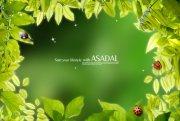绿色背景海报设计素材