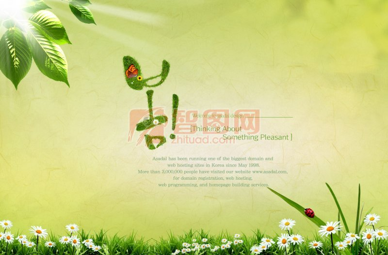綠色背景素材