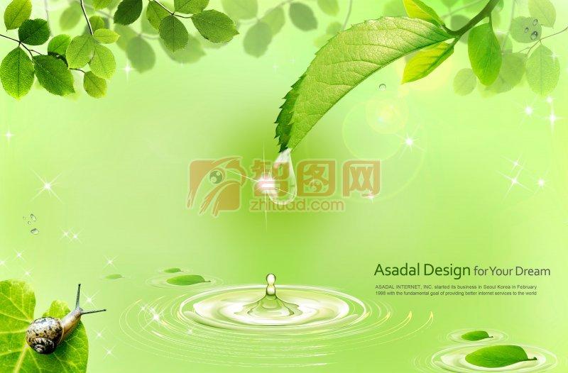 綠色背景元素