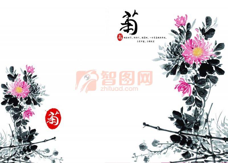 菊花系列素材