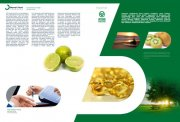 綠色食品素材