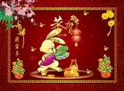大红中国风背景素材 2011恭贺新禧
