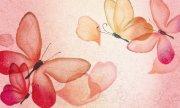 蝴蝶花纹背景