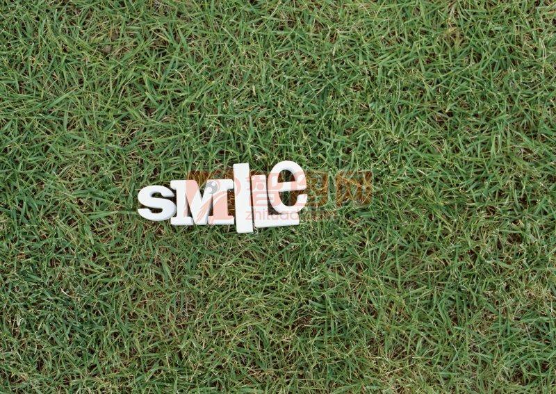 草地上的smile