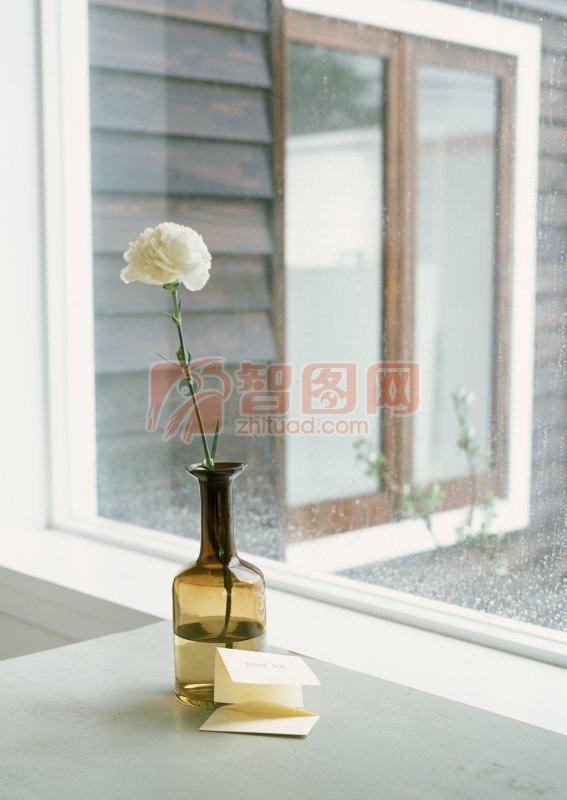 插花的花瓶