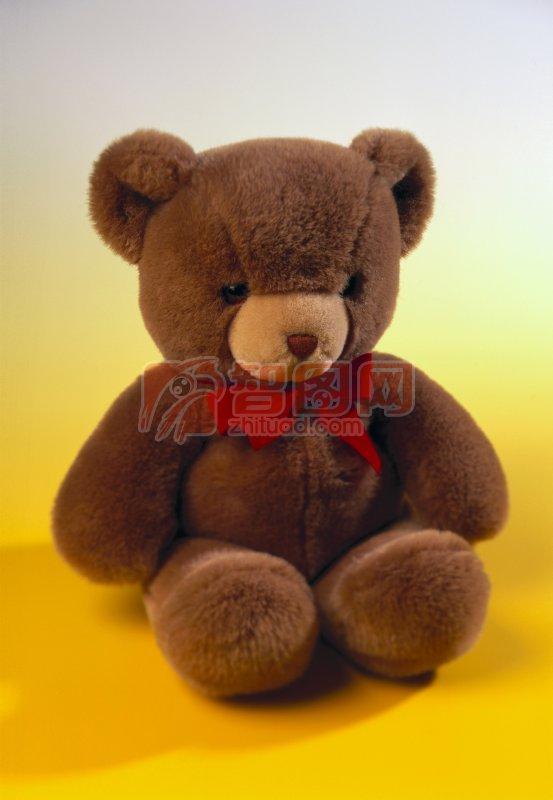 小熊仔 棕色小熊