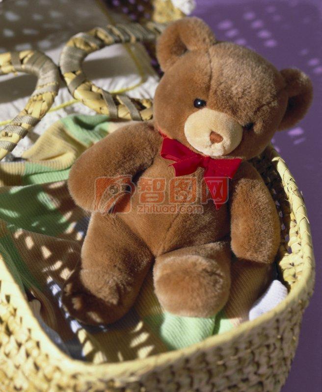 棕色熊 小熊玩具