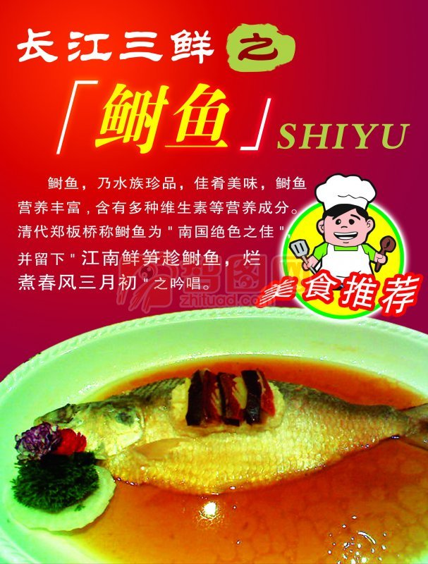 美味鲥鱼宣传
