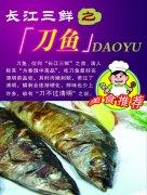 美食刀鱼宣传