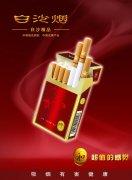 精品香烟素材