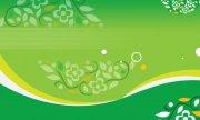绿色花儿展板