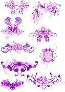 紫色花紋展示