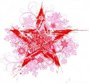 紅色五星花紋
