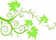绿色花纹素材