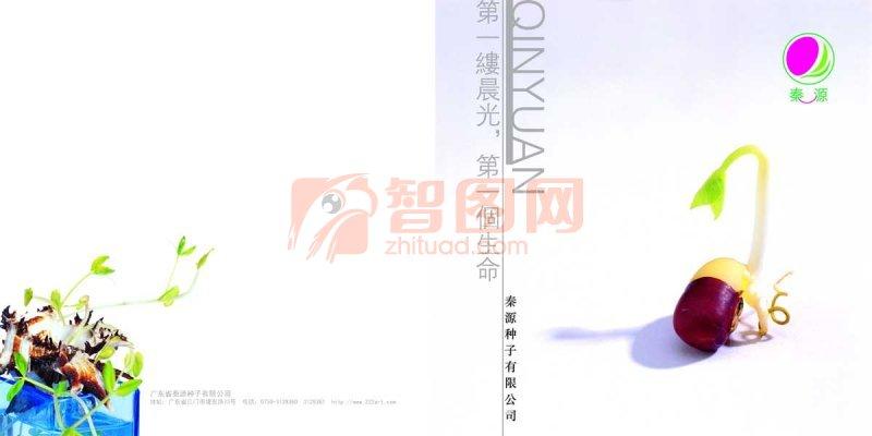 秦源种子有限公司画册版式设计