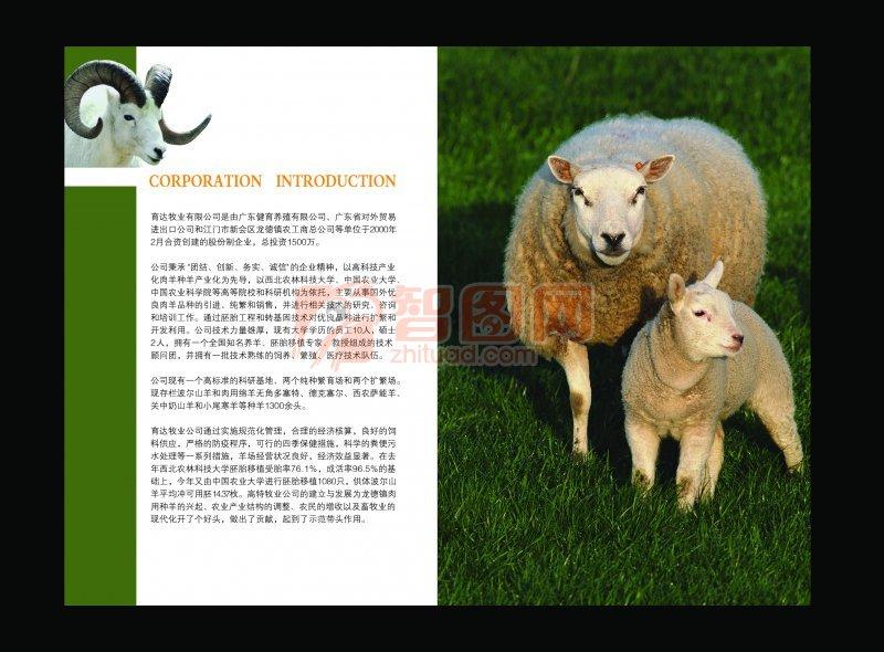 育達牧業畫冊宣傳