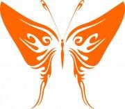 蝴蝶元素15
