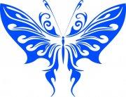 蝴蝶元素13