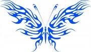 蝴蝶元素12