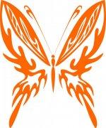 蝴蝶元素11