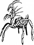 古怪的虫子