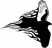 雄鹰花纹图案