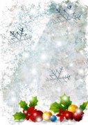 圣诞夜的雪花